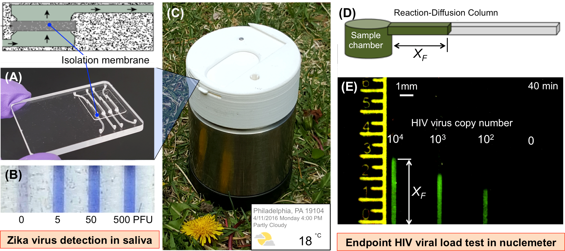 Microfluidic Technology for Point of Care Molecular Diagnostics